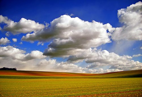 Field and sky scenery